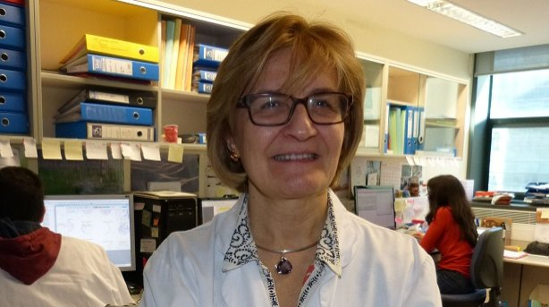 comité médico científico fundacion neuroblastoma rosa noguera